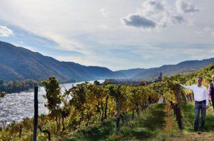 0027_jamek_wineyard